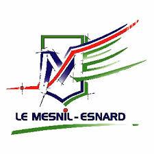 le-mesnil-esnard-logo